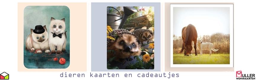 Citaten Over Uilen : Uilen dierenkaarten en cadeautjes muller wenskaarten online