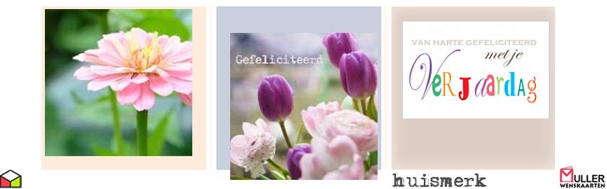 bloemen blanco