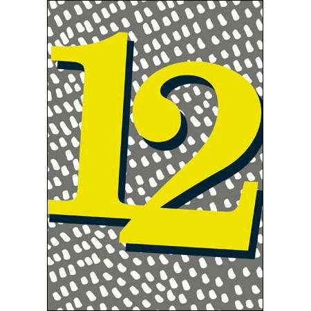 12 jaar 12 jaar   verjaardagskaart woodmansterne   grijs geel | Muller  12 jaar