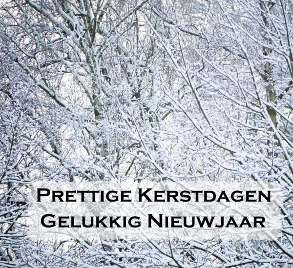Citaten Kerst En Nieuwjaar : Kerstkaarten prettige kerstdagen gelukkig nieuwjaar bomen