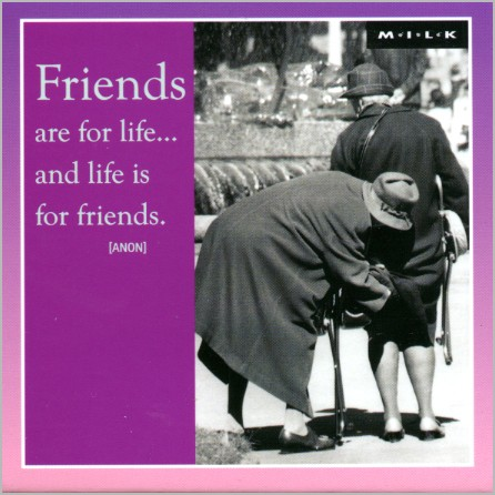 Magneet (M.I.L.K.): Friends are for life.. and life is for friends.
