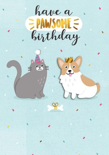 Verjaardagskaart Have A Pawsome Birthday Kat En Hond Muller