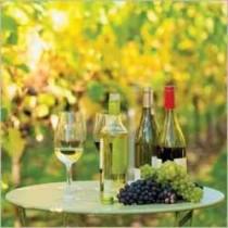 Champagne Wijn En Bier Verjaardagskaarten Muller Wenskaarten