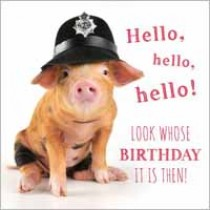 verjaardagskaart - hello, look whose birthday it is then - biggetje