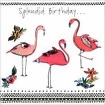 verjaardagskaart - splendid birthday... - flamingo