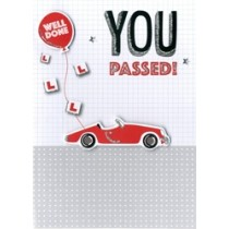 felicitatiekaart rijbewijs - you passed! well done