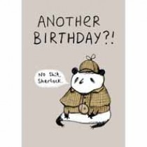 verjaardagskaart - another birthday - sherlock panda
