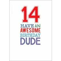 14 jaar - verjaardagskaart - 14 have an awesome birthday dude