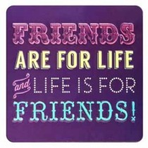 tinnen magneet - friends are for life and live is for friends!