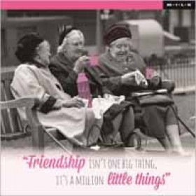 Friendship is not one big thing, it is a million little things (M.I.L.K.)