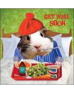 beterschapskaart - get well soon - zieke cavia