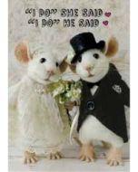 santoro tiny squee mousies trouwkaart - i do