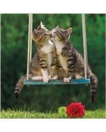 wenskaart rapture - kusje - kittens