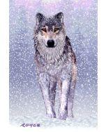 3d ansichtkaart - lenticulaire kaart - wolf