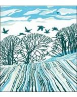5 kerstkaarten woodmansterne - winter landschap met vogels