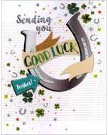 grote wenskaart A4 veel geluk - sending you good luck wishes! - hoefijzer en klavertje 4