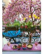 ansichtkaart bildreich - kersenbloesem op het balkon
