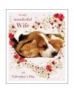 grote valentijnskaart woodmansterne - to my wonderful wife on valentine's day - kat en hond
