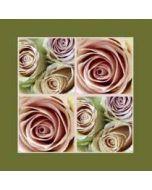 bloemenkaart muller wenskaarten - rozen roze, groen