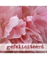 felicitatiekaart muller wenskaarten - gefeliciteerd roze