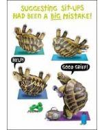 wenskaart crackerjack - suggesting sit-ups had been a big mistake! - schildpad