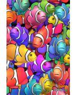 3d ansichtkaart - lenticulaire kaart - clown visjes