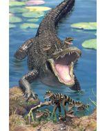 3d ansichtkaart - lenticulaire kaart - krokodil