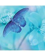 wenskaart second nature - vlinder op blauwe bloemen