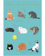 verjaardagskaart roger la borde - have a purrfect birthday - katten