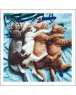 wenskaart woodmansterne - kittens