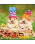 wenskaart woodmansterne - konijnen