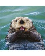 wenskaart woodmansterne - otter