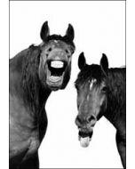 wenskaart woodmansterne - paarden