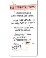 magnetische boekenlegger - best friends forever