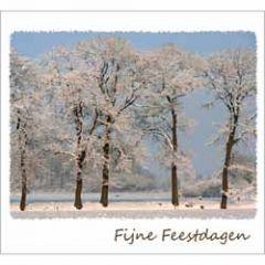 10 kerstkaarten - fijne feestdagen - winterlandschap