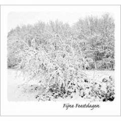 10 kerstkaarten - fijne feestdagen - winterlandschap zwart-wit