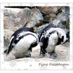 10 kerstkaarten - fijne feestdagen - pinguins
