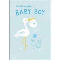 geboortekaartje - special delivery baby boy - ooievaar