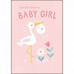 geboortekaartje - special delivery baby girl - ooievaar