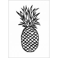 ansichtkaart  - ananas - zwart-wit