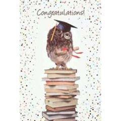 felicitatiekaart geslaagd - congratulations - wijze uil op boeken
