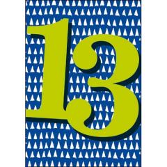 13 jaar - verjaardagskaart woodmansterne - blauw groen