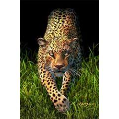 3d ansichtkaart - lenticulaire kaart - luipaard