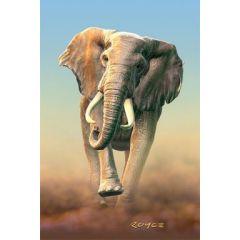 3d ansichtkaart - lenticulaire kaart - afrikaanse olifant