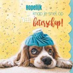 beterschapskaart cuddles - hopelijk knap je snel op veel beterschap! - hond met kruik