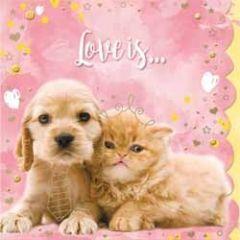 romantische wenskaart cuddles - love is...