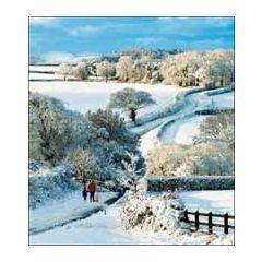 5 kerstkaarten woodmansterne - winterlandschap - 2