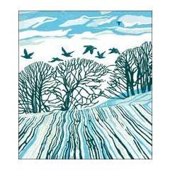 5 kerstkaarten woodmansterne - winterlandschap met vogels