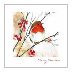 luxe kerstkaart woodmansterne - merry christmas - roodborstje