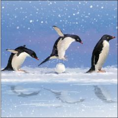 5 kerstkaarten woodmansterne - pinguins sneeuwpret